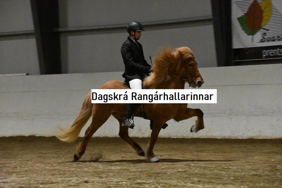 Reiðhöllin